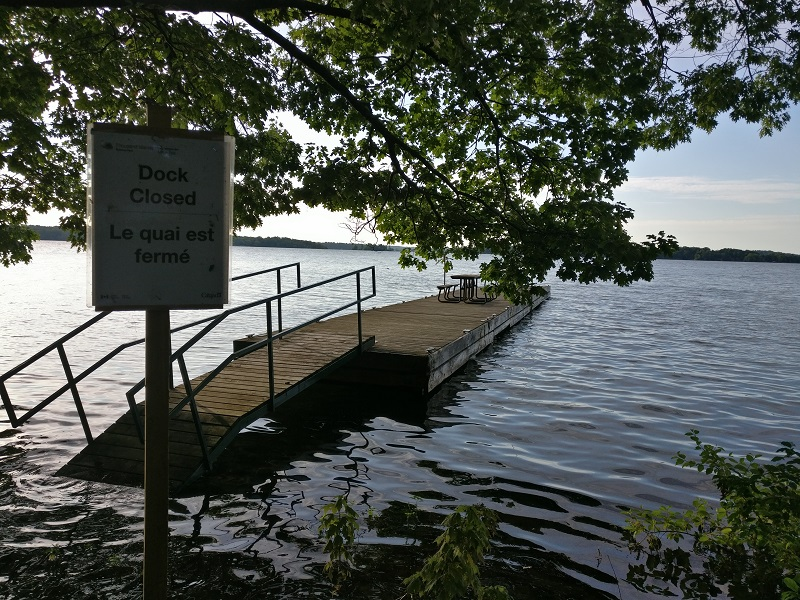 Gordon Island Flooding 1000 Islands